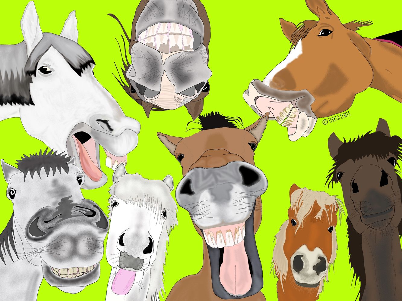 I love Horses.  The favourite characters from our Equestrian herd