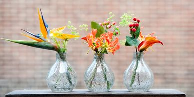DutZ Collection glassware handcrafted wholesale United kingdom coloured glass flower vases plant pot