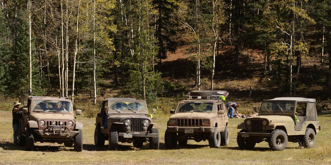 Group of Jeeps.