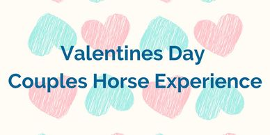 Valentine's Day. Date night. Adventure. Horse lessons.