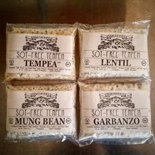 Four tempeh varieties; tempea, garbonzo, lentil, and mung bean.