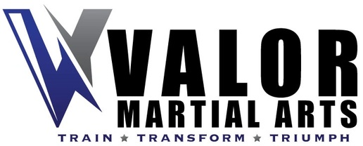 Victory Martial Arts Georgetown