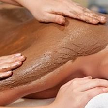 body mud treatment polish waxing