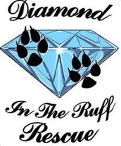 Diamond in the Ruff Rescue