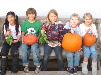 Pumpkins, gourds and squash are kids garden favorites.