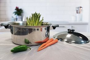 BioNcookware pot with food