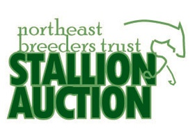 NorthEast Breeders Trust Stallion Auction & Futurity