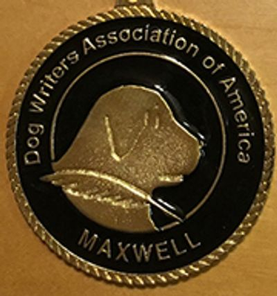 Maxwell Medallion Front