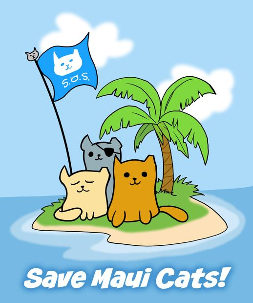 Save Maui Cats is a great, safe charity to donate to! Non profit, 501c3 charitable organization.