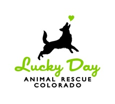 lucky day Animalrescue