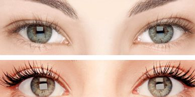 EYE LASH LIFTS IN YORKVILLE PETALS YORKVILLE BEAUTY BROW AND LASH BAR