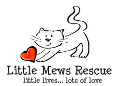 Little Mews Rescue