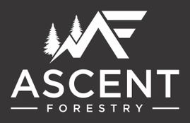 Ascent Forestry