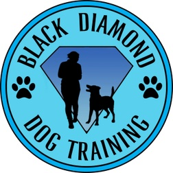 Black Diamond Dog Training