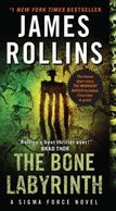 A book cover titled The Bone Labyrinth by James Rollins with abstract cave art on the front