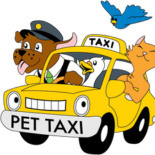 Pet Taxi Services to/from local vet office. In home doggie day care and other services are available