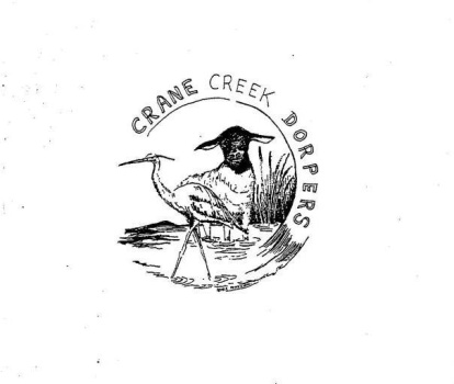 Crane Creek Dorpers and White Dorpers