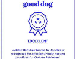 Awarded Excellent for health testing of breeding stock