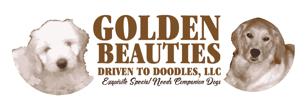 Golden Beauties . . . Driven to Doodles, LLC