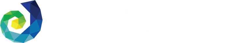 Diamond Chameleon Group, LLC