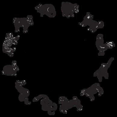 Chinese Astrology - BaZi   Pooja Shirasi