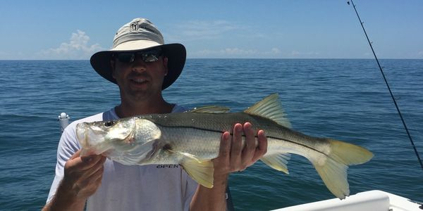 Marco Island near shore reef and wreck fishing charter for snook