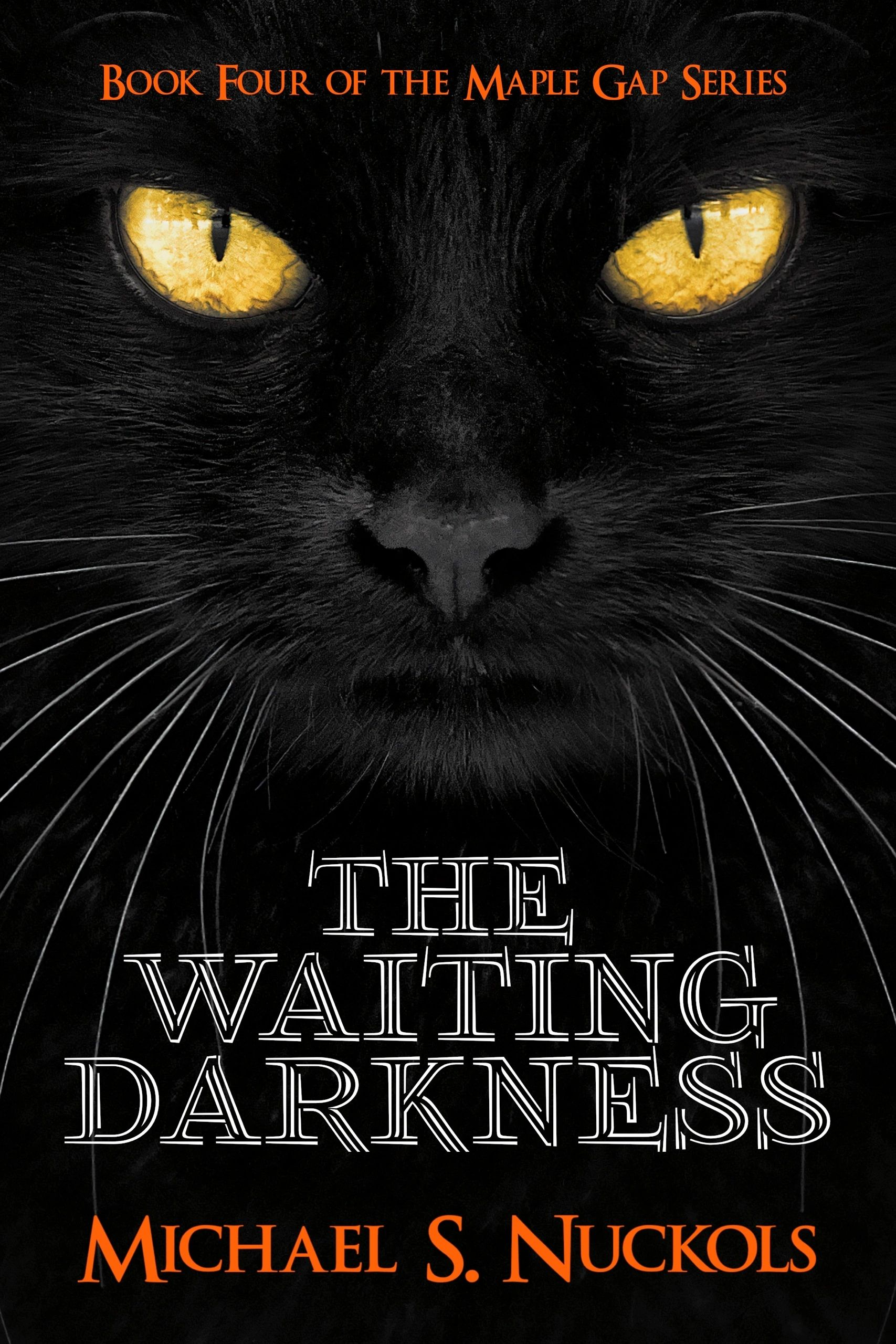 The cover of The Waiting Darkness shows a black cat