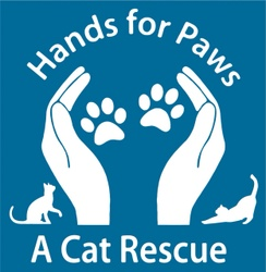 Hands for Paws - a Cat Rescue