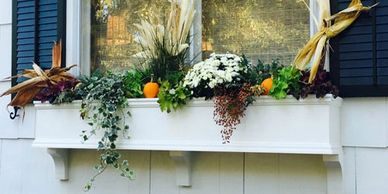 Window Box Ideas for Spring, Summer, Fall, and Winter