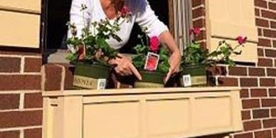 How to Window Boxes and DYI