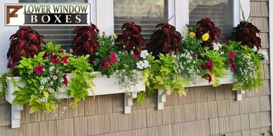 Flower Window Boxes, Shop Window Boxes, Planters, and Rail Planters
