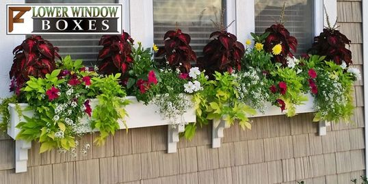 Shop for Window Boxes
