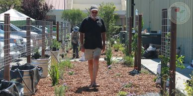 community food bank mark paxton small space gardens gardening growing hearts