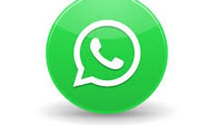 What's App, Messaging, What's App Icon