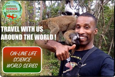 Travel the world with your school, and join a mission to save Endangered species and wildlife !