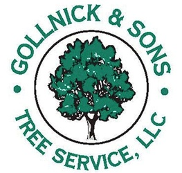 Gollnick & Sons Tree Service LLC