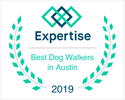 best austin dog walkers: the sporty dog