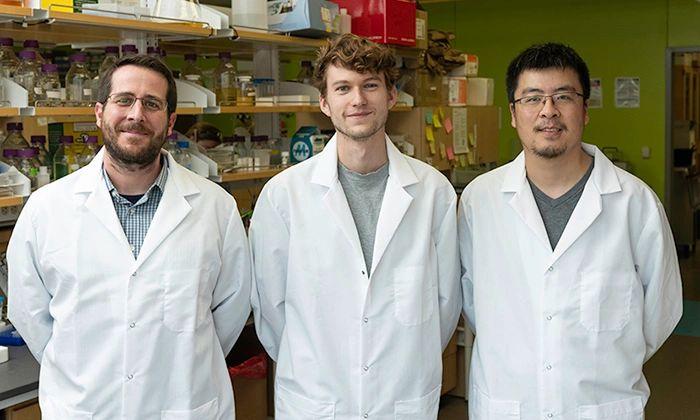 左起:分子生物科学副教授Jason S. McLellan,研究生Daniel Wrapp和研究助理Nianshuang Wang于2020年2月17日星期一在德克萨斯大学奥斯汀分校的McLellan实验室合影。