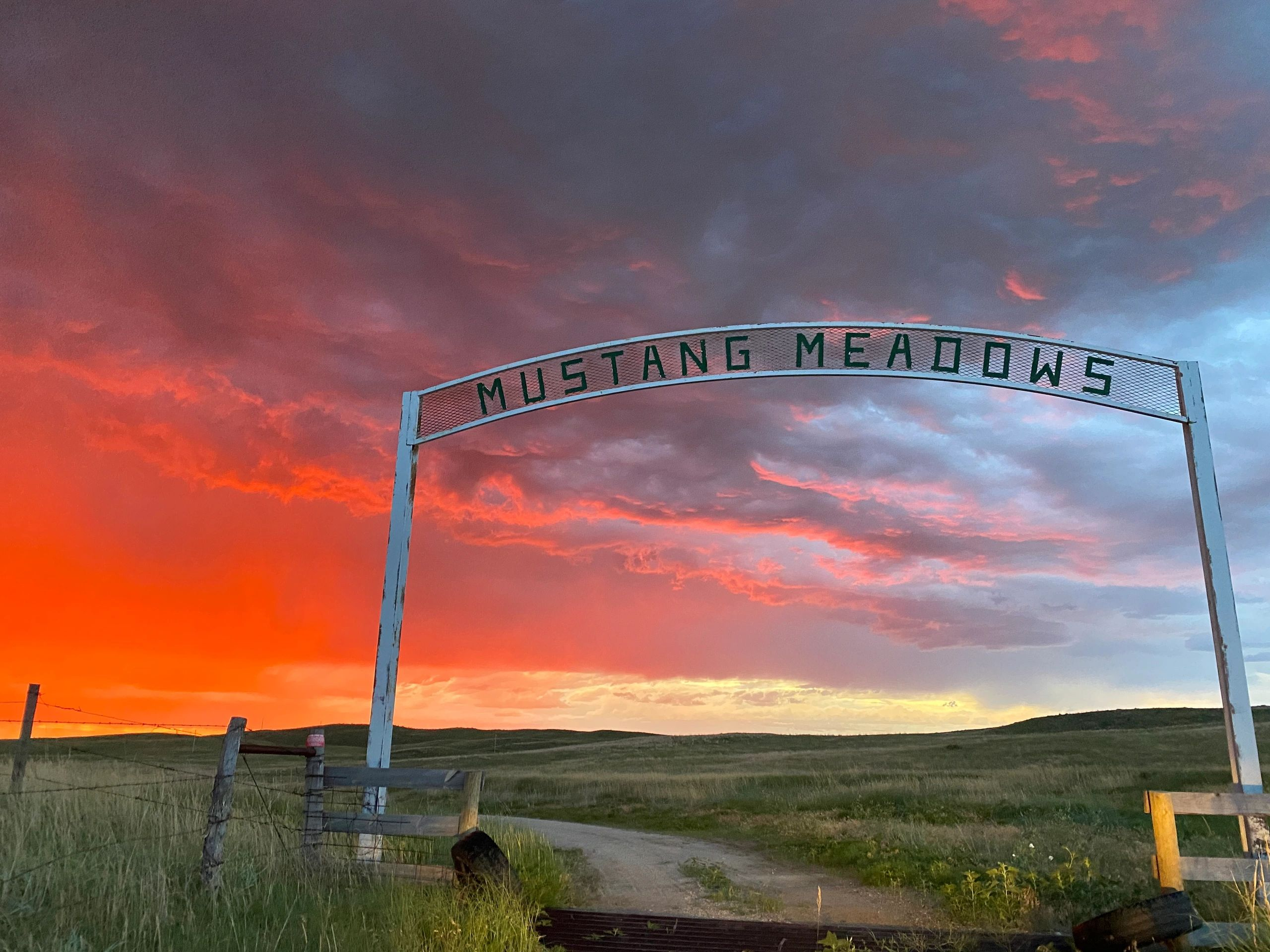 Sunset at Mustang Meadows on the Rosebud Reservation, the site of the Wolakota Buffalo Range