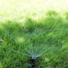 Irrigation, Watering System, Landscape, Best Landscaper North Shore, Patios, Pools