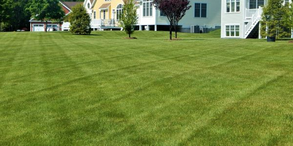 Landscape Maintenance, Mowing, Commercial Property, HOA, Lawn Care
