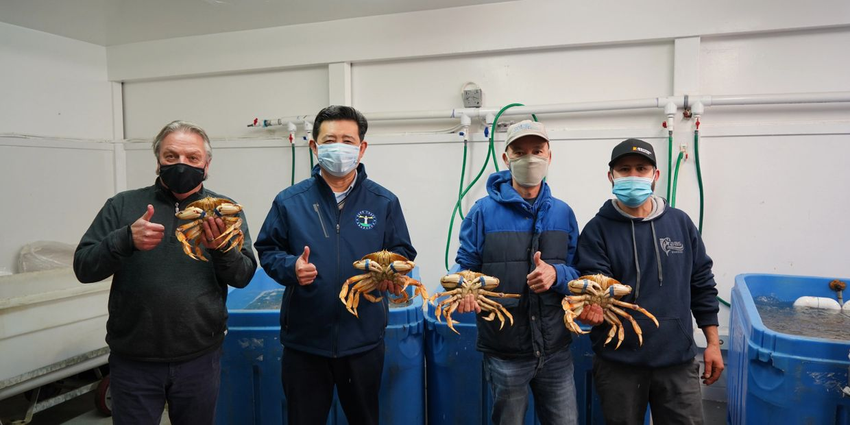 Dungeness Crab Supplier Safe Coast Seafoods' team holding Dungeness Crab