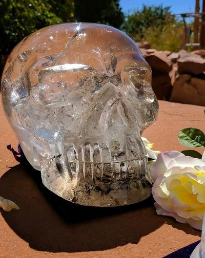 Meet Condor, this beautiful skull has been energized by the amazing Ancient Crystal Skull, Einstein.