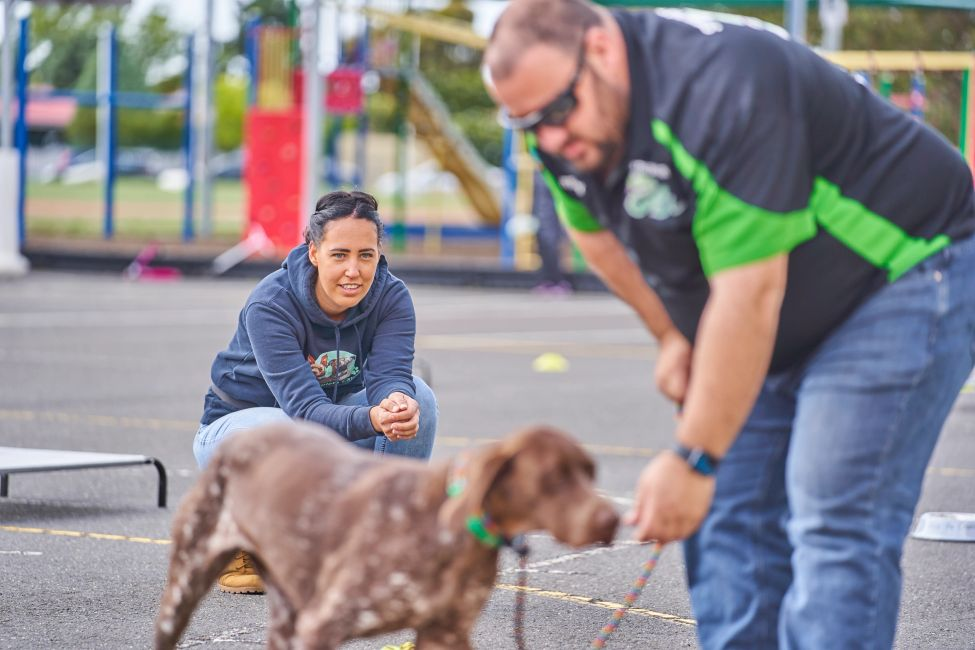 One on One lessons and private instruction to ensure you and your dog will grow and learn at your own pace.