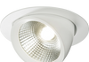 Recessed LED adjustable white down-light.