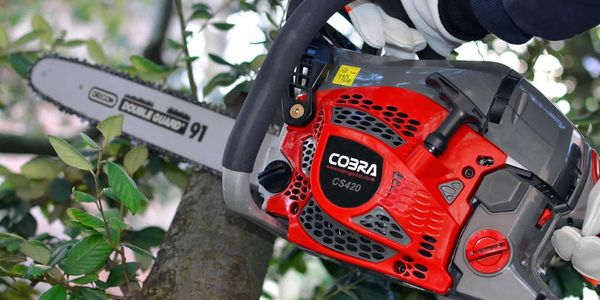 chainsaw servicing in Dorset