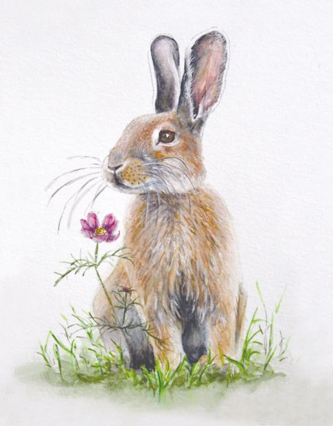 Watercolor Hare Painting, Bunny Art, Rabbit Smelling Flower, Watercolor  Painting, Bunny Note Card