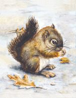 Baby Squirrel, Realistic Animal Watercolor, Squirrel Watercolor Leaf, 5x7 Print, 8x10 Watercolor