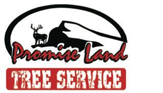 Promise Land Tree Service