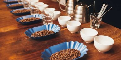 Coffee Cupping at Acoustic Java Coffee Shop and Roastery in Worcester MA